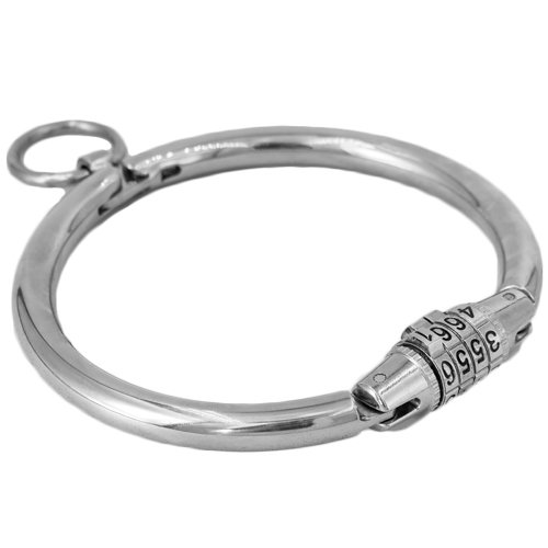 Lair Stainless Steel Combination Lock Collar