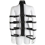 Lair Leather Collar and Arm Restraint